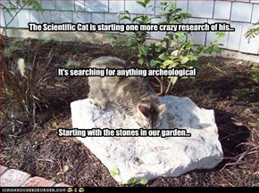 The Scientific Cat is starting one more crazy research of his...
