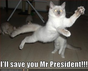 I'll save you Mr President!!!