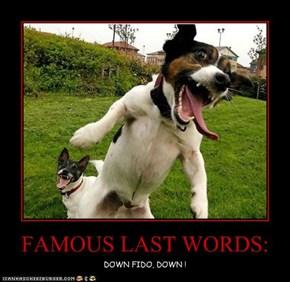 FAMOUS LAST WORDS: