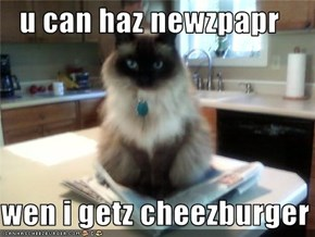 u can haz newzpapr  wen i getz cheezburger