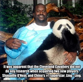 It was apparent that the Cleveland Cavaliers did not  do any research when acquiring two new players: Shaquille O'Neal, and China's #1 superstar, Ling - Ling.