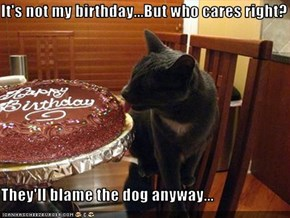 It's not my birthday...But who cares right?  They'll blame the dog anyway...