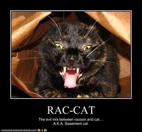 RAC-CAT
