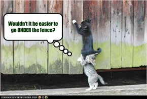 Wouldn't it be easier to go UNDER the fence?