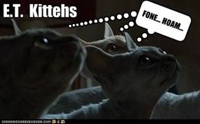 E.T.  Kittehs