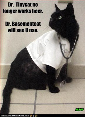 Dr.  Tinycat no longer works heer.  Dr. Basementcat will see U nao.