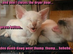 ...and den I closes the dryer door... press button... den dumb dawg went thump, thump.... hehehe...