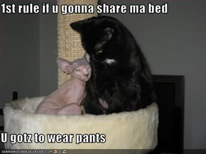 1st rule if u gonna share ma bed  U gotz to wear pants