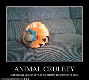 ANIMAL CRULETY