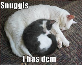 Snuggls  I has dem