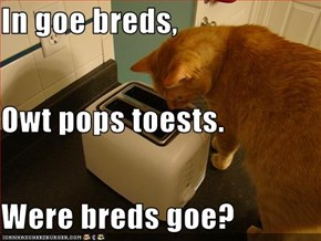 In goe breds, Owt pops toests. Were breds goe?