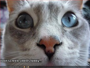 Your screen smells funny...