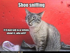 Shoo sniffing