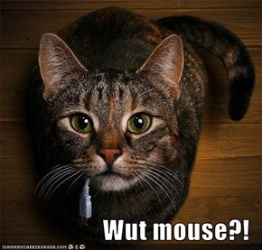 Wut mouse?!