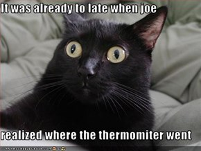 It was already to late when joe  realized where the thermomiter went