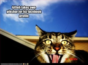 kitteh takes own pikshur for hiz facebook profile