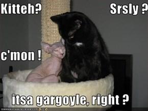 Kitteh?                          Srsly ? c'mon ! itsa gargoyle, right ?
