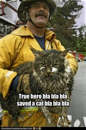 True hero bla bla bla saved a cat bla bla bla