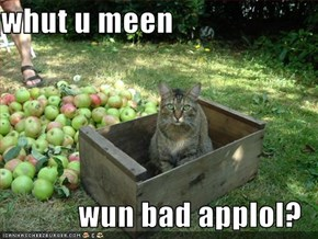 whut u meen  wun bad applol?