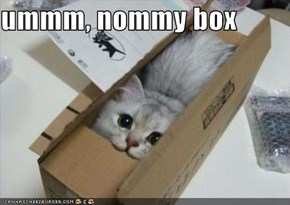 ummm, nommy box