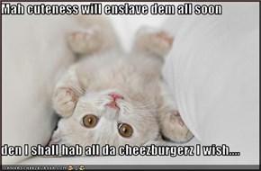 Mah cuteness will enslave dem all soon  den I shall hab all da cheezburgerz I wish....