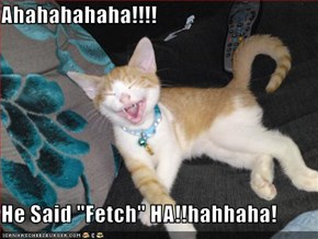 "Ahahahahaha!!!!  He Said ""Fetch"" HA!!hahhaha!"