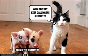 WHY DO THEY KEEP CALLING ME MOMMY?!