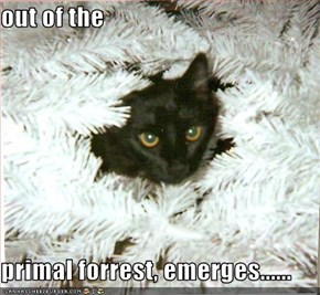 out of the   primal forrest, emerges......
