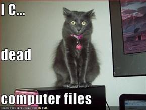 I C... dead computer files