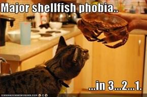 Major shellfish phobia..  ...in 3...2...1.