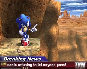 Breaking News - sonic refusing to let anyone pass!