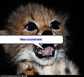 Yikes u scared meh!