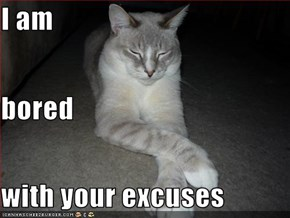 I am bored with your excuses