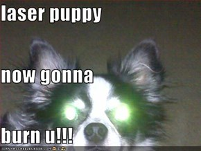 laser puppy now gonna burn u!!!