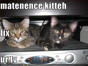 matenence kitteh fix ur tv