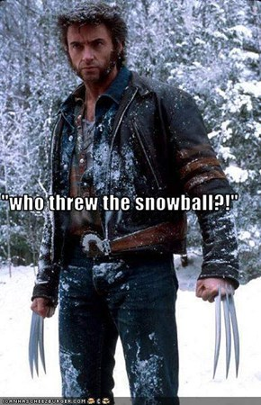 """who threw the snowball?!"""