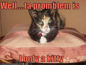 Well....ta promblem is  I only a kitty