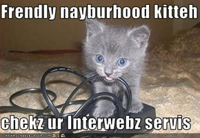 Frendly nayburhood kitteh  chekz ur Interwebz servis