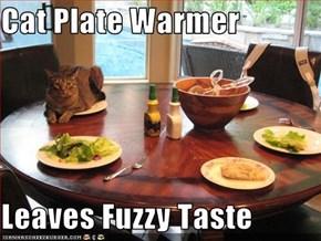 Cat Plate Warmer  Leaves Fuzzy Taste