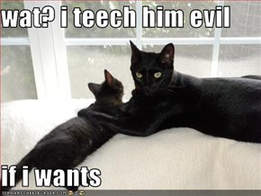 wat? i teech him evil  if i wants