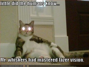 little did the humans know...  Mr. whiskers had mastered lazer vision.