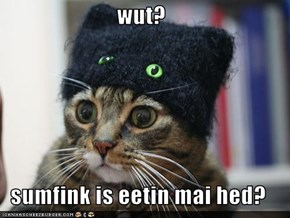 wut?  sumfink is eetin mai hed?