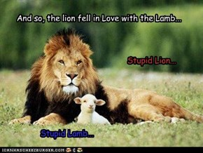 And so, the lion fell in Love with the Lamb...