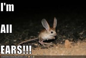 I'm All EARS!!!