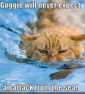 Goggie will never expect  an attack from the sea!