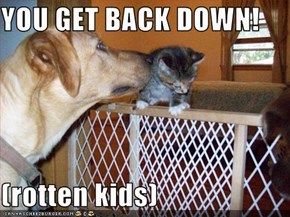 YOU GET BACK DOWN!  (rotten kids)