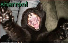 sharron!