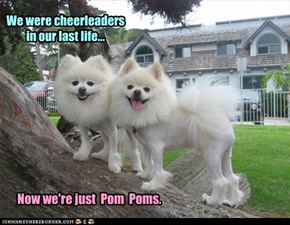 We were cheerleaders in our last life...