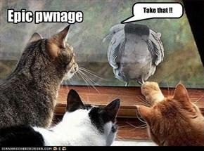 Epic pwnage