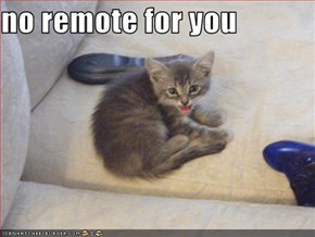 no remote for you